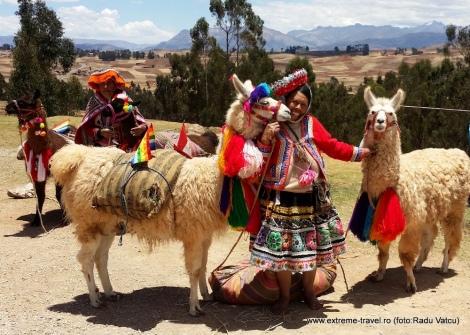 Peru_lame